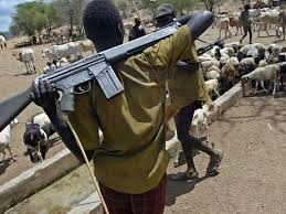 Image result for herdsmen with guns pictures