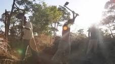 Image result for pictures of farmers with weapons africa